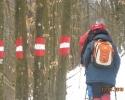 Marked hiking trails