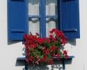 Prozor u Terzića avlija