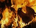 Vatra i zemlja