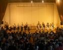 Koncert u Ripnju