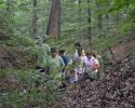 Ekološke aktivnosti